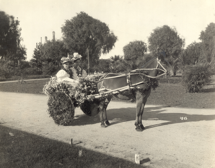 Two girls in bonnets and mutton-sleeve clothing, sitting on a decorated pony cart during the 1895 Rose Parade. 1895 Source: http://pasadenadigitalhistory.com