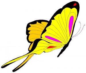 Clip Art_Butterfly