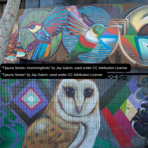 graffiti art images of owl and hummingbirds by Jay Galvin